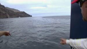 """30""""TV:  Stor madding til en stor fisk Billed"""