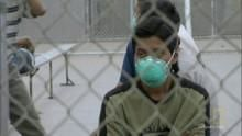 Webisode:  Swine flu outbreak Programma