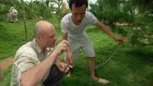 Dodelijke slang Programma