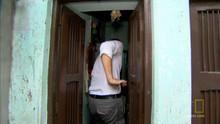 Dhaka - Macaco Malandro programa
