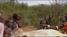 Tehénhát-ugrás film