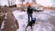 Web episode: Nike the Rottweiler's Aggression show